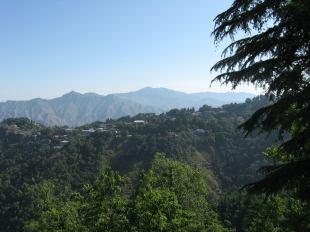 bergen Himachal Pradesh