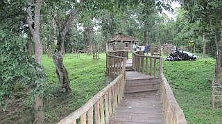 Dubare elephant camp