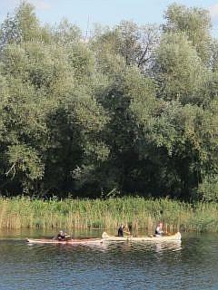 kajakken in de Biesbosch